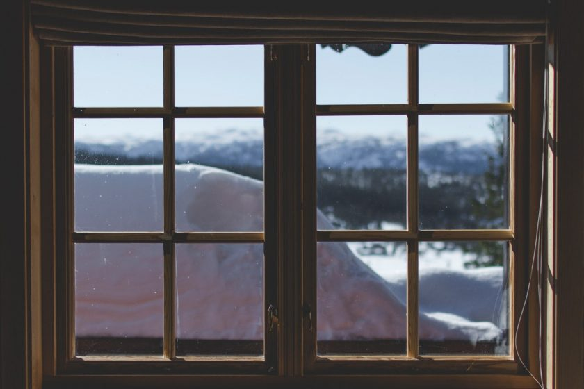 How Timber Windows Are Created From Forest